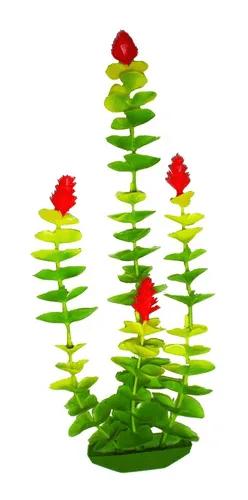 Planta Plastica diversas