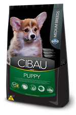 237_19_brasil_cibau-puppy-medium